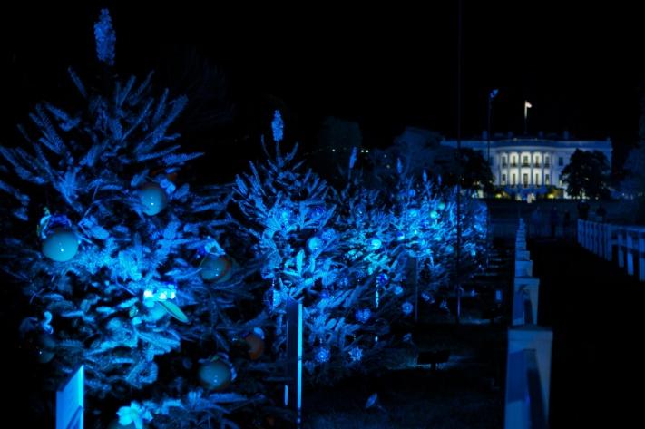 National Tree Lighting Ceremony 2012 24